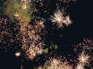 Prestations de Spectacles : C'est la fête !